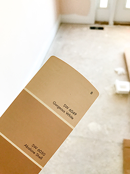 2017-02 Comparing Paint Swatches